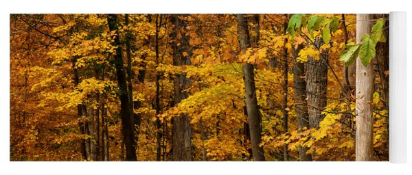 Autumn Colors Yoga Mat