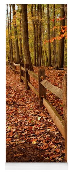 Yoga Mat featuring the photograph Autumn Fence by Angie Tirado