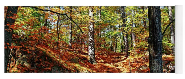 Autumn Forest Killarney Yoga Mat
