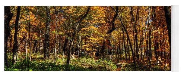 Autumn Forest Path At Johnson's Mound Yoga Mat