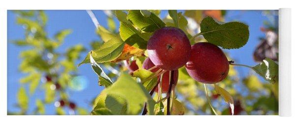 Autumn Fruit Yoga Mat