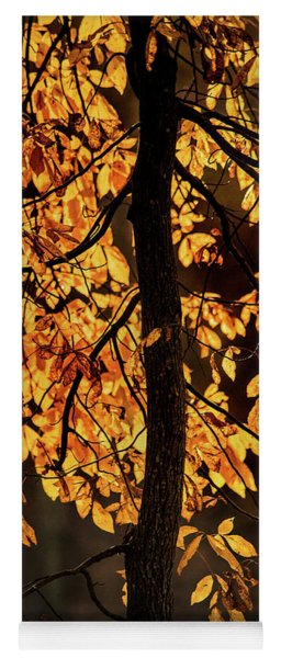 Autumn Gold Yoga Mat