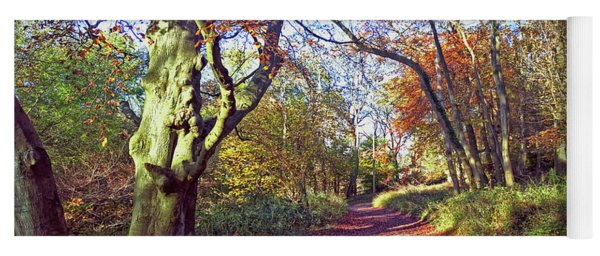 Autumn In Ashridge Yoga Mat