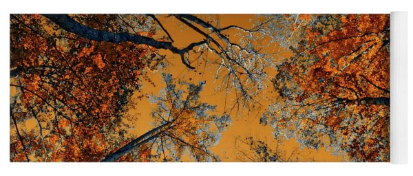 Autumn In The Forest Yoga Mat