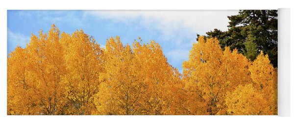 Autumn In The Owyhee Mountains Yoga Mat