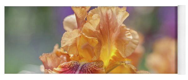 Autumn Leaves Iris Flower. The Beauty Of Irises  Yoga Mat