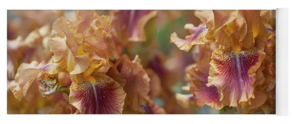 Autumn Leaves Irises In Garden Yoga Mat
