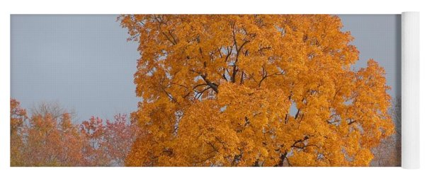 Autumn Over Prettyboy Yoga Mat