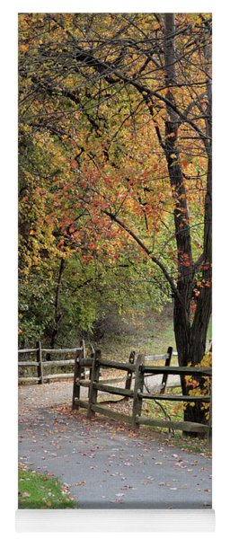 Autumn Path In Park In Maryland Yoga Mat