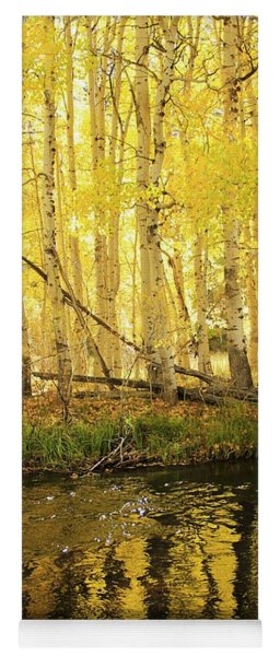 Autumn Soft Light In Stream Yoga Mat