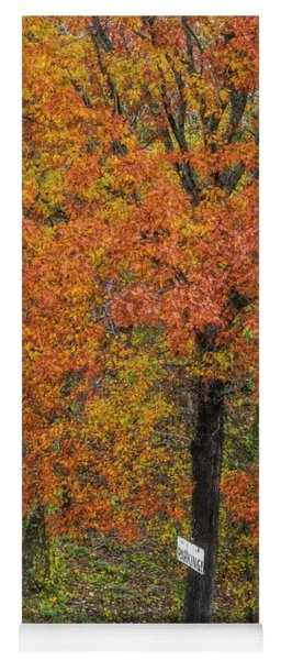 Autumn Tree Yoga Mat