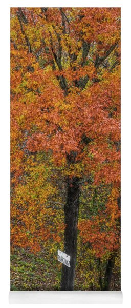 Autumn Tree Yoga Mat