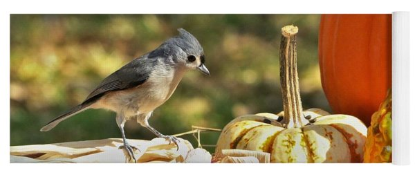 Autumn Tufted Titmouse Yoga Mat