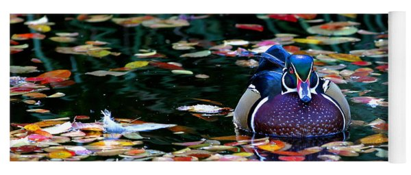 Autumn Wood Duck Yoga Mat