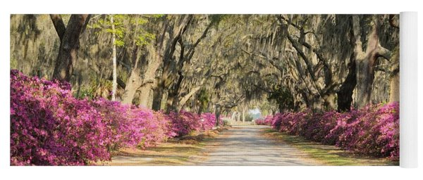 azalea lined road in Spring Yoga Mat