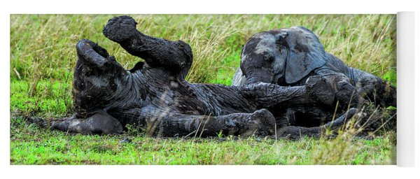 Baby Elephants Playing In The Mud Yoga Mat