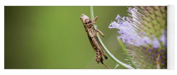 Baby Grasshopper Yoga Mat