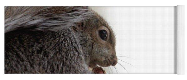 Baby Squirrel Portrait Yoga Mat