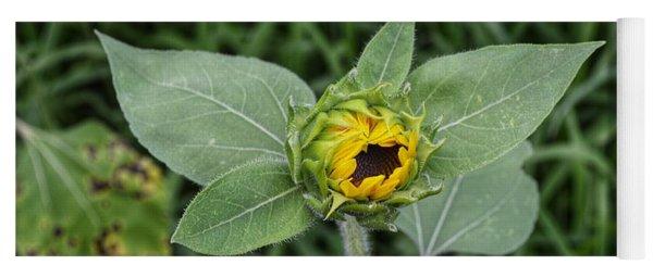 Baby Sunflower  Yoga Mat