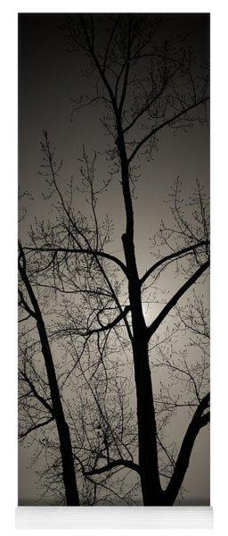 Backlit Trees Yoga Mat