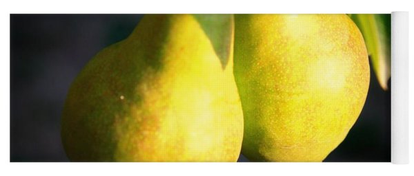 Backyard Garden Series - Two Pears Yoga Mat