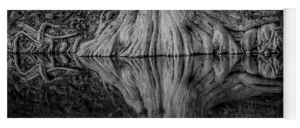 Bald Cypress Reflection In Black And White Yoga Mat