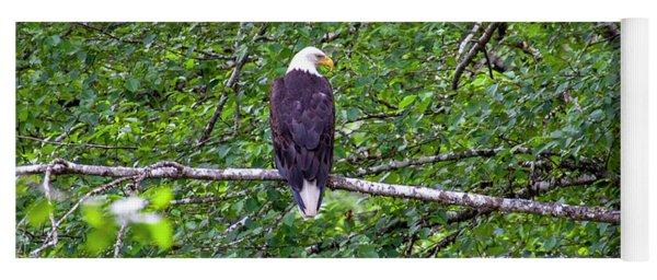 Bald Eagle 1 Yoga Mat