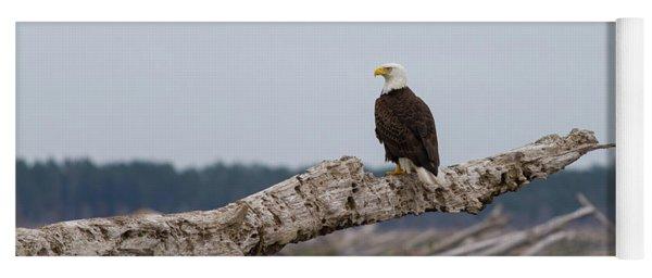 Bald Eagle #1 Yoga Mat