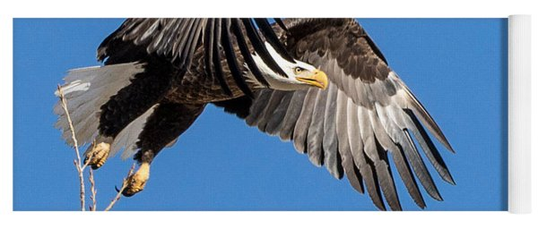 Bald Eagle Flight 3 Yoga Mat
