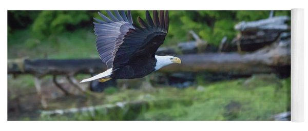 Bald Eagle Flying Low Yoga Mat