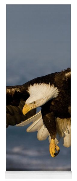 Bald Eagle In Action Yoga Mat