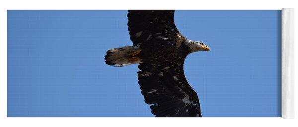 Bald Eagle Juvenile Soaring Yoga Mat