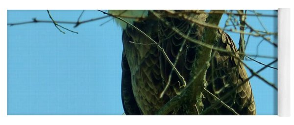 Bald Eagle Keeping Guard Yoga Mat