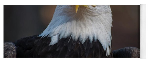 Bald Eagle Looking Right Yoga Mat