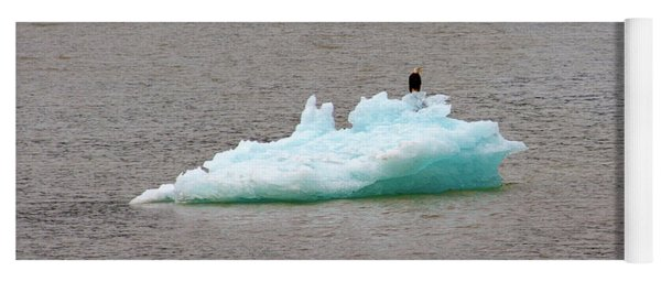 Bald Eagle On Blue Glacial Ice Yoga Mat