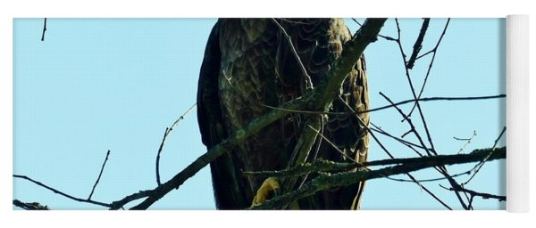 Bald Eagle Over The Root River Yoga Mat