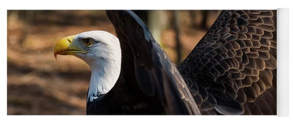 Bald Eagle Preparing For Flight Yoga Mat