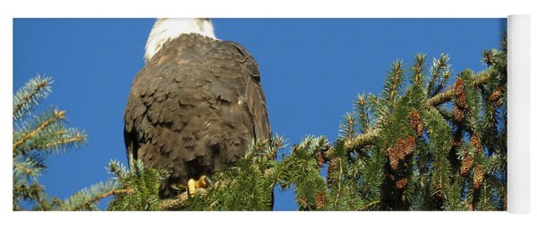 Bald Eagle Sunbathing Yoga Mat