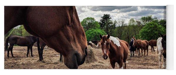 Band Of Horses Yoga Mat