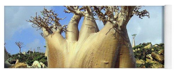 Baobab Tree Yoga Mat