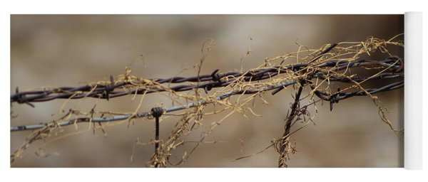Barbed Wire Entwined With Dried Vine In Autumn Yoga Mat