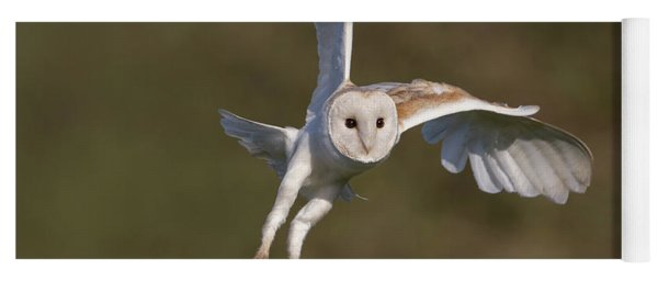 Barn Owl Cornering Yoga Mat