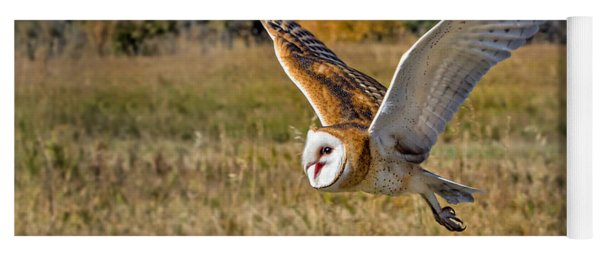 Barn Owl Flight 6 Yoga Mat