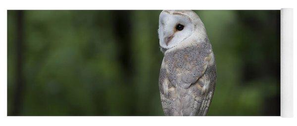 Barn Owl In The Woods 2 Yoga Mat