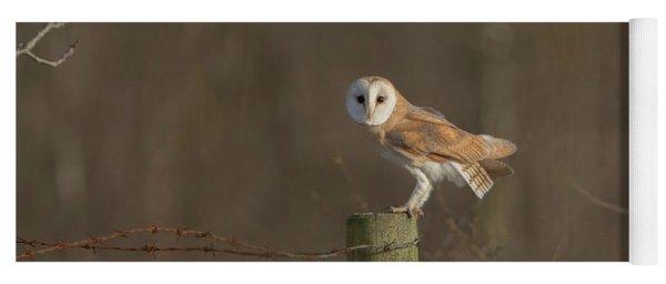 Barn Owl On Fence Yoga Mat