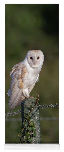 Barn Owl On Ivy Post Yoga Mat
