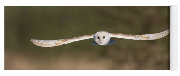 Barn Owl Wingspan Yoga Mat