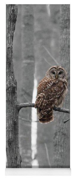 Barred Owl In Winter Woods #1 Yoga Mat