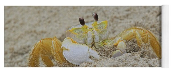 Beach Crab In Sand Yoga Mat