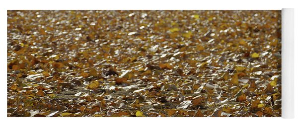 Beach Of Autumn Leaves Yoga Mat